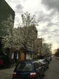Greenpoint, Brooklyn, NY