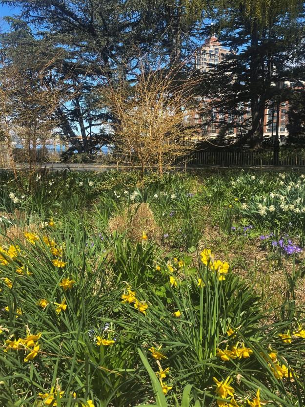 Hudson River Park 12-30 p,.m. 4-6-2020