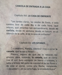 "typescript, Chapter XVI of Platero y yo, ""la Casa de Enfrente"" (The House Across the Street)"