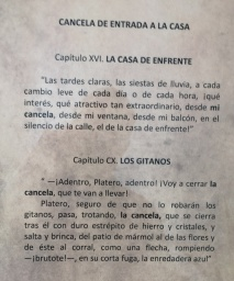 "typescript, Chapter XVI of Platero y yo, ""la Casa de Enfrente"" (The House Across the Street)"