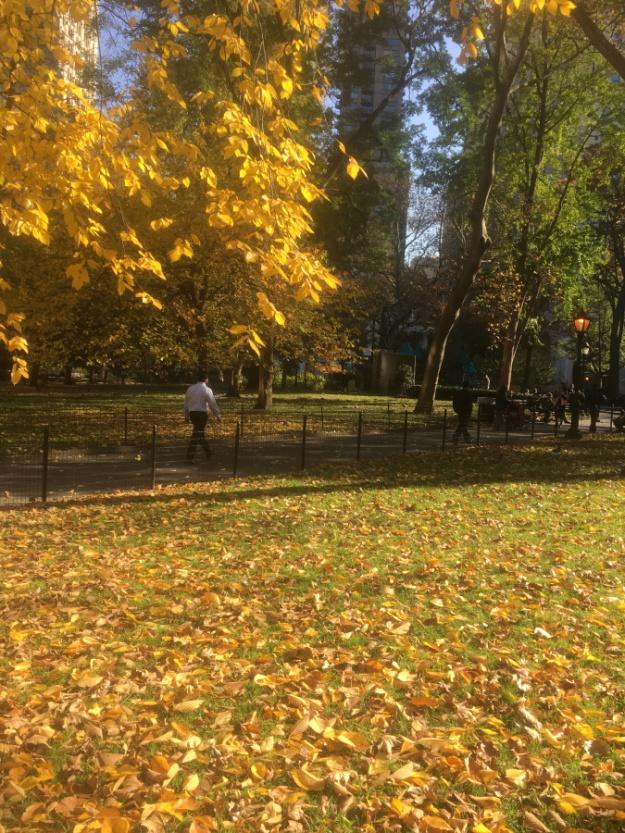 3- Madison Square Park