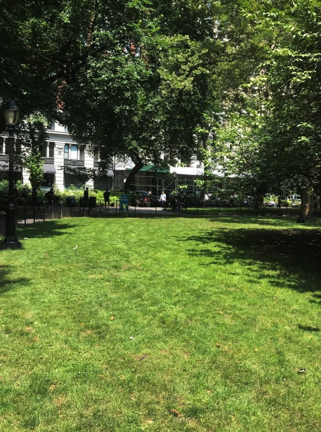 Madison Square Park 2-23 p.m. 7-27-2018
