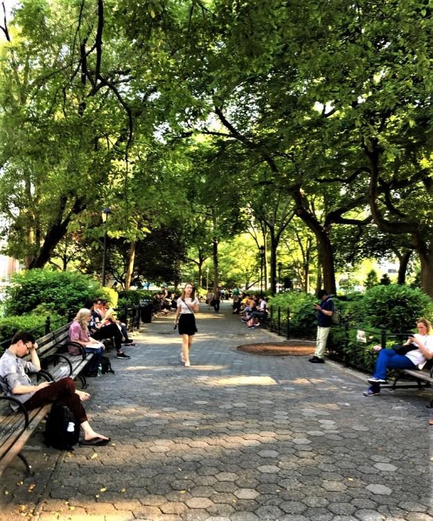 Union Square Park 5-54 p.m. 6-12-2017.jpg